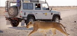 What to expect on your OVERLAND Tour?
